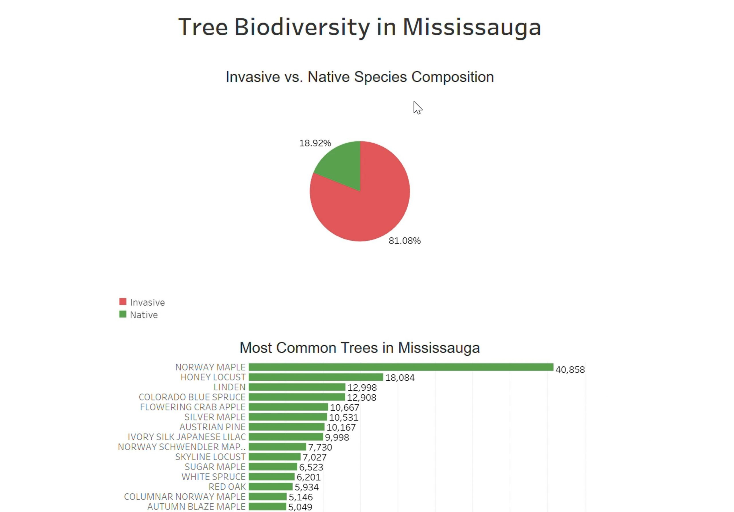 Team Treetops - Tree Biodiversity